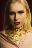 Mooie jonge vrouw met heldere make-up en gouden folie op haar Ne Royalty-vrije Stock Afbeelding