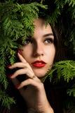 Mooie jonge vrouw met rode lippen die op een achtergrond van thuja stellen Stock Foto