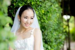 mooie jonge vrouw op huwelijksdag in witte kleding in de boommuur Royalty-vrije Stock Foto