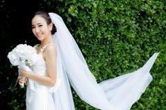 mooie jonge vrouw op huwelijksdag in witte kleding in de boommuur Stock Afbeelding