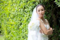 mooie jonge vrouw op huwelijksdag in witte kleding in de boommuur Royalty-vrije Stock Fotografie