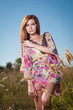 Mooie jonge vrouw op wild bloemengebied op blauwe hemelachtergrond Portret van aantrekkelijk rood haarmeisje met het lange haar o Stock Afbeeldingen