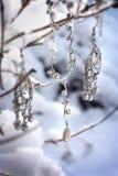 Mooie juwelen in sneeuwscène Stock Foto's
