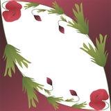 Mooie kaart met twee papaverbloemen Stock Afbeeldingen
