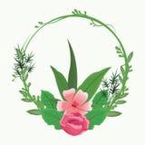Mooie kaderbloemen Royalty-vrije Stock Afbeelding
