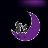 Mooie katten die op de maan zitten Stock Foto's