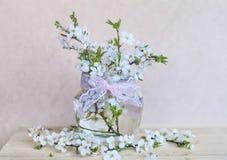 Mooie kersentakjes in kleine decoratieve glasvaas Royalty-vrije Stock Afbeelding