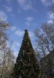 Mooie Kerstboom Stock Afbeelding