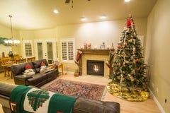 Mooie Kerstboom en open haard met kat het ontspannen op laag royalty-vrije stock afbeelding