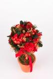 Mooie Kerstmisboom op witte achtergrond Royalty-vrije Stock Foto