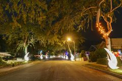 Mooie Kerstmislichten in hogere Hastings-Boerderijbuurt royalty-vrije stock afbeelding