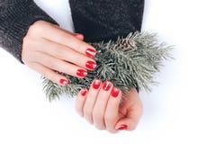 Mooie Kerstmismanicure Stock Fotografie
