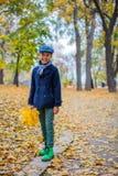 Mooie kindjongen in de de herfstaard royalty-vrije stock afbeeldingen