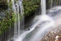 Mooie kleine kreek en waterval stock foto
