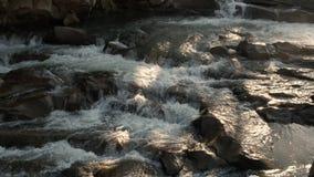 Mooie kleine waterval in bos stock footage