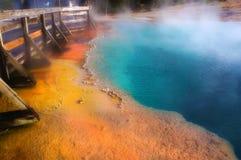 Mooie kleuren in zonnige dag, het Nationale Park van Yellowstone, Wyoming Stock Fotografie
