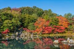 Mooie kleurenbladeren en bezinning in de vijver bij Tenryuji-tempel Stock Fotografie