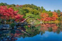 Mooie kleurenbladeren en bezinning in de vijver bij Tenryuji-tempel Royalty-vrije Stock Fotografie