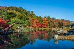 Mooie kleurenbladeren en bezinning in de vijver bij Tenryuji-tempel Stock Afbeeldingen