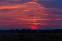 Mooie kleurrijke zonsondergang De hemelflikkeringen in verschillende kleuren Men kan de silhouetten van bomen en huizen zien Stock Fotografie