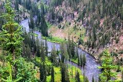 Mooie klippen van het Yellowstone de Nationale Park met rotsen en mos en bossen royalty-vrije stock fotografie