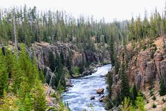 Mooie klippen van het Yellowstone de Nationale Park met rotsen en mos en bossen royalty-vrije stock afbeeldingen