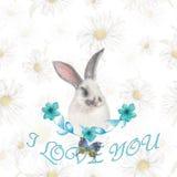 Mooie konijntjeskaart Stock Fotografie