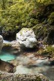 Mooie kreken van water hurst van Sunik, Slovenië stock afbeeldingen
