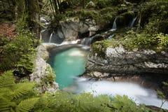 Mooie kreken van water hurst van Sunik, Slovenië royalty-vrije stock afbeeldingen
