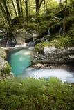 Mooie kreken van water hurst van Sunik, Slovenië royalty-vrije stock foto