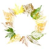 Mooie kroon van zegels van bladeren van bomen en bloemen met c vector illustratie