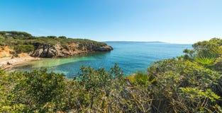 Mooie kust in Alghero royalty-vrije stock foto's