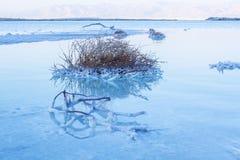 Mooie kust van het Dode Overzees Stock Fotografie