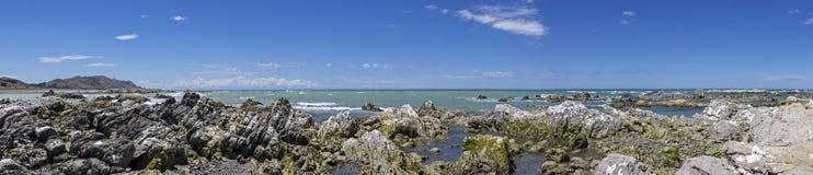 Mooie kustlijn in Marlborough, Nieuw Zeeland stock afbeelding