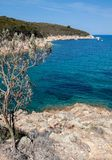 Mooie kustlijnen in het eiland van Elba. Italië royalty-vrije stock fotografie