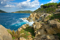 Mooie kustlijnen in het eiland van Elba. Italië stock foto's