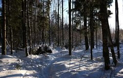 Mooie landschappen van Russische Europese aard Landschappen van alle seizoenen stock afbeelding