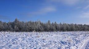 Mooie landschappen van Russische Europese aard Landschappen van alle seizoenen stock fotografie