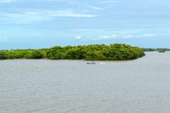 Mooie landschapsmening van kust bosbehoudsplaats in Samutprakarn in Thailand Stock Afbeelding