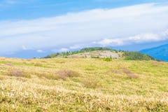 Mooie landschapsmening van Utsukushigahara-park met blauwe sk Stock Fotografie