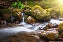 Mooie landschapsstroomversnelling op een bergenrivier in zonlicht Royalty-vrije Stock Foto's