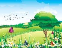 Mooie landschapsvector Stock Foto's