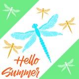 Mooie libellen met kleurrijke vleugels De zomer van kaarthello Royalty-vrije Stock Foto's