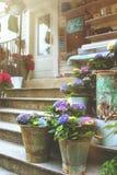 Mooie lilac hydrangea hortensia's in ijzeremmers op de treden Royalty-vrije Stock Foto's