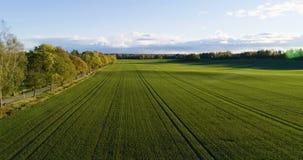 Mooie luchtvideo van Katrineholm, Zweden, Scandinavië op de herfstdag stock videobeelden