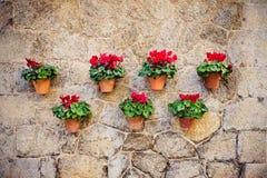 Mooie mediterrane decoratie op een muur in het historische dorp Valldemosa in Majorca Royalty-vrije Stock Afbeelding
