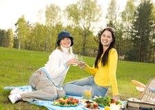 Mooie meisjes bij picknick Stock Foto's