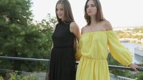 Mooie meisjes die bij de partij stellen stock video