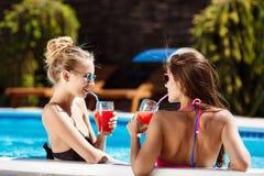 Mooie meisjes die, spreken, het drinken cocktails, die in zwembad ontspannen glimlachen Royalty-vrije Stock Foto