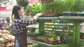 Mooie meisjesverkoper in een schort die met tuininstallaties werken stock videobeelden